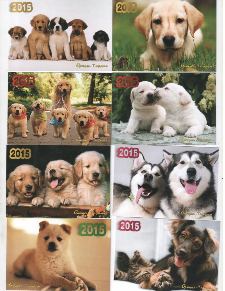 Рекламные карманные календари с собаками